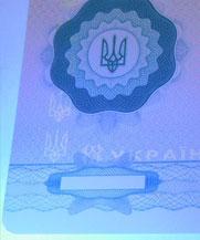 Диплом - свечение УФ (Днепр)